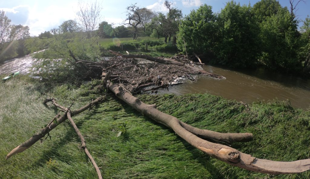 Alme Hochwasser 2019 - Baumverhau